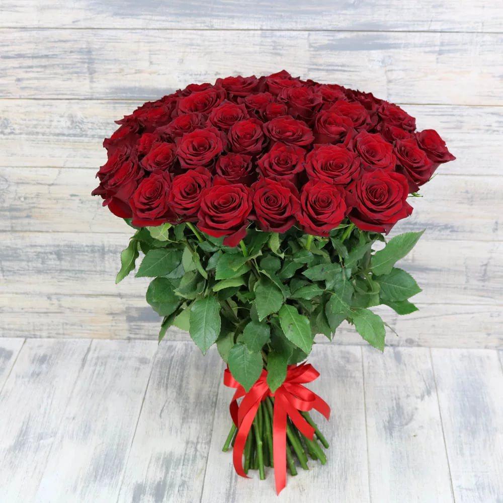 Фон картинок розы розовый глубокого бордового